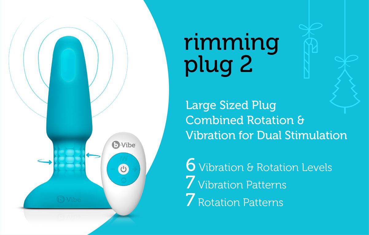 Rimming Plug 2